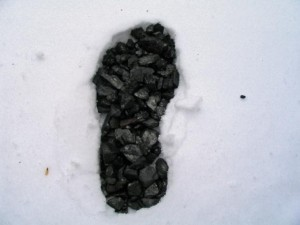 CARBON FOOTPRINT.jpg