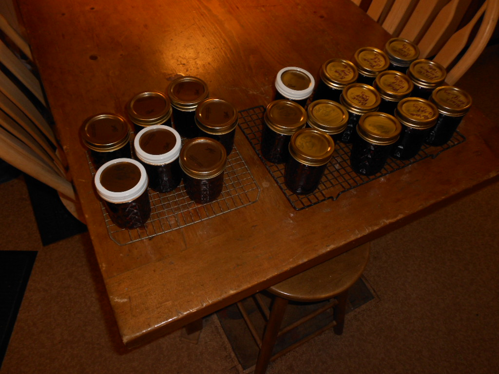 20 jars of jams.JPG
