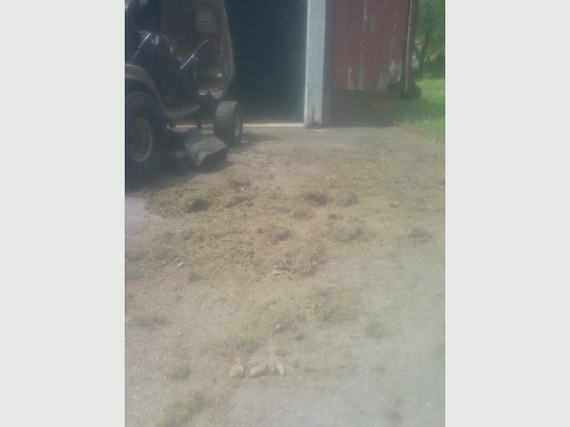 Craftsman tractor, pile of hay, grass.jpg